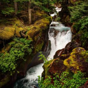 Avalanche Creek - glacier park women's retreat
